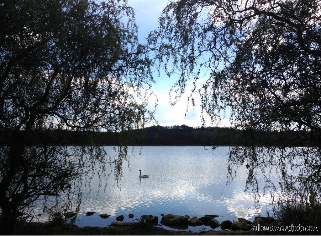 paysage ailette lac center parc