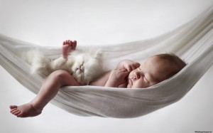 cat-and-baby-8