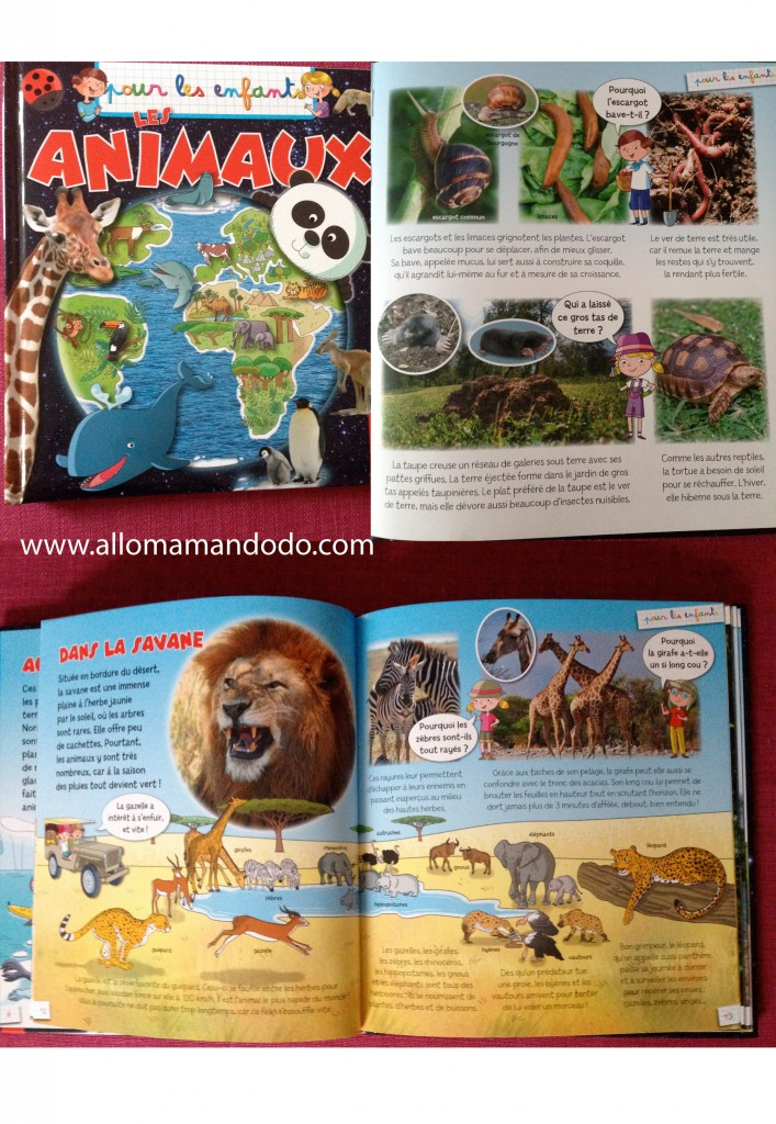 livre animaux enfants