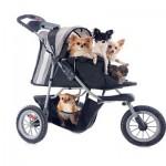 Tu veux un autre enfant? Non, adopte un chien! (#Humour!!!)