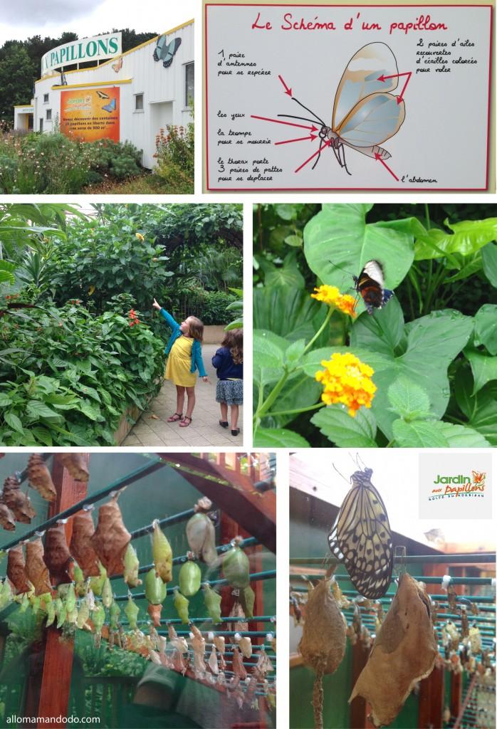 jardin aux papillons bretagne