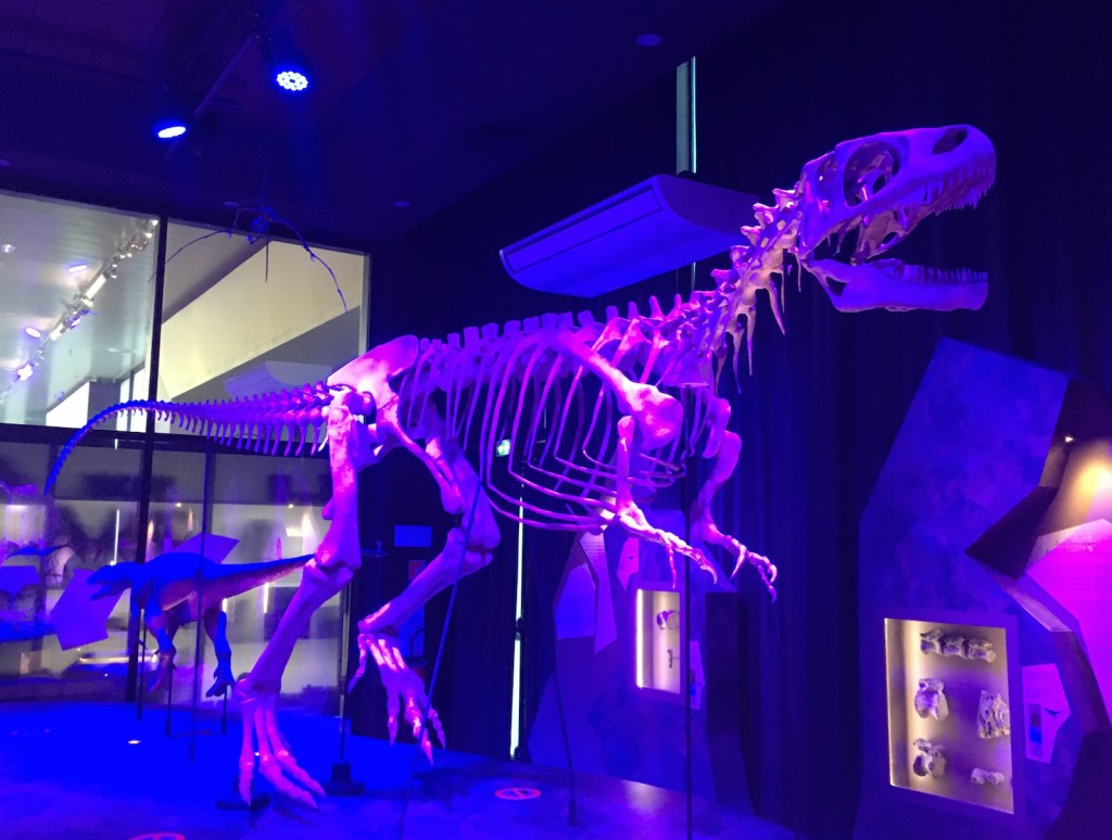 musée dinosaures normandie