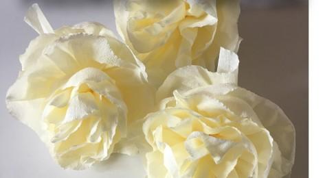 DIY Fleurs en Papier Crépon (Tuto Photos Facile!)